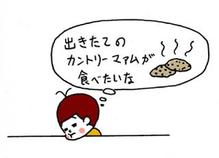 クッキー01.jpg